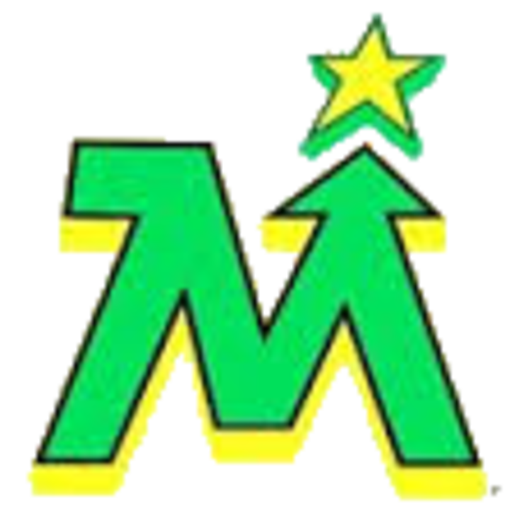 Team Minnesota mascot
