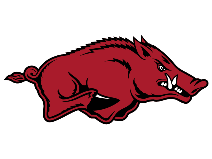 Arkansas High School mascot