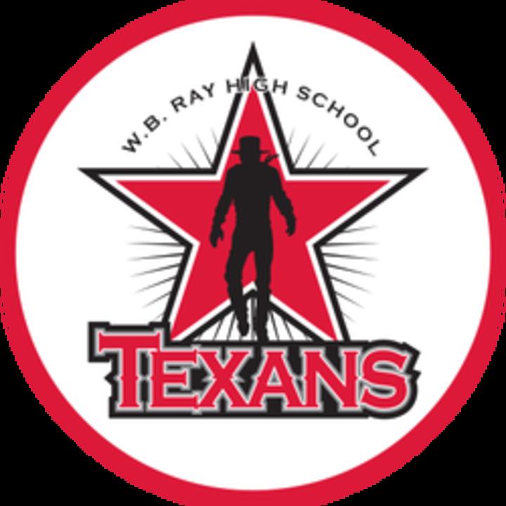 Ray High School mascot