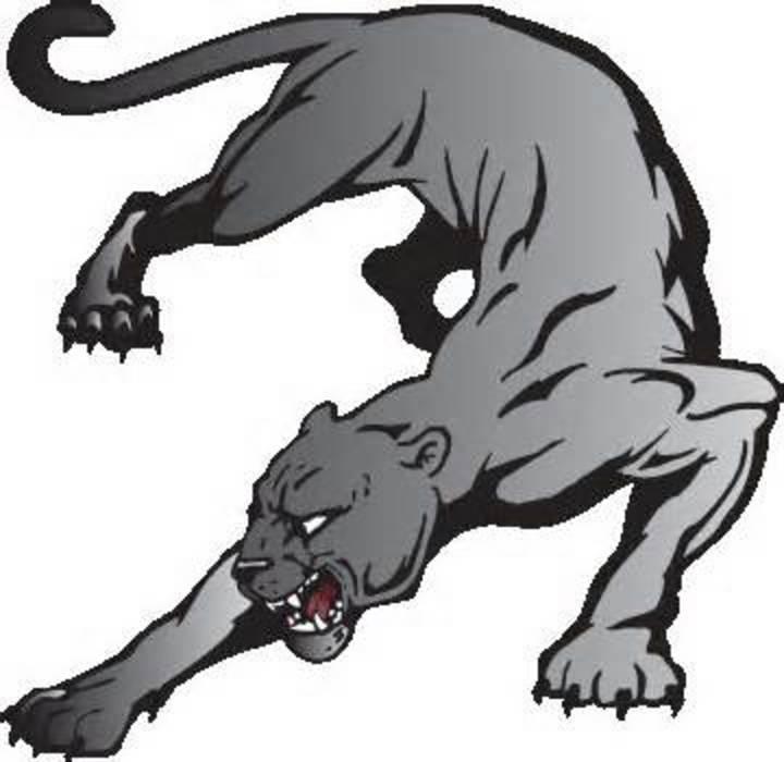 Theodore Roosevelt High School mascot