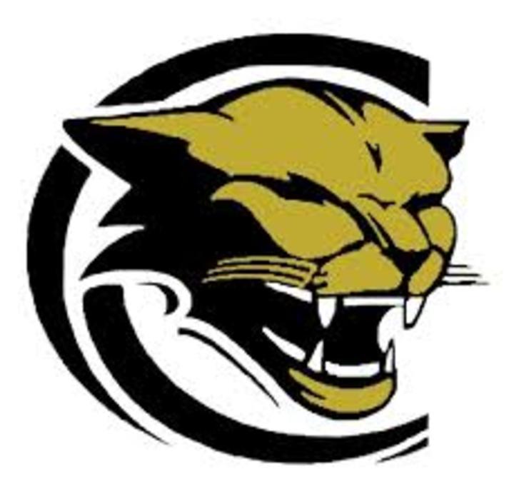 New Prairie High School mascot