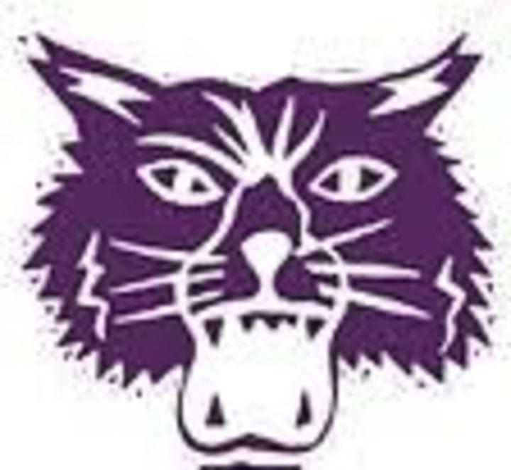Muncie Central High School mascot