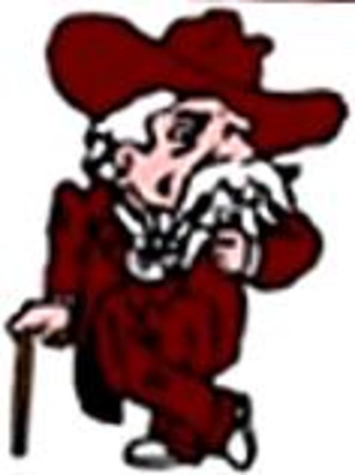 Henderson County High School mascot