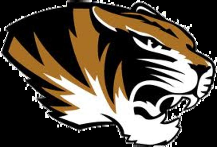 Festus High School mascot