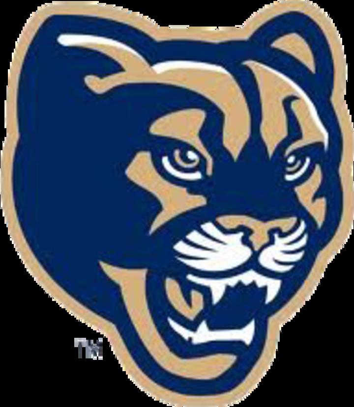 Sumner-Fredericksburg High School mascot