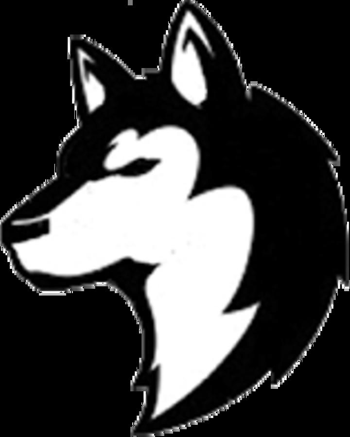 Nashua-Plainfield High School mascot
