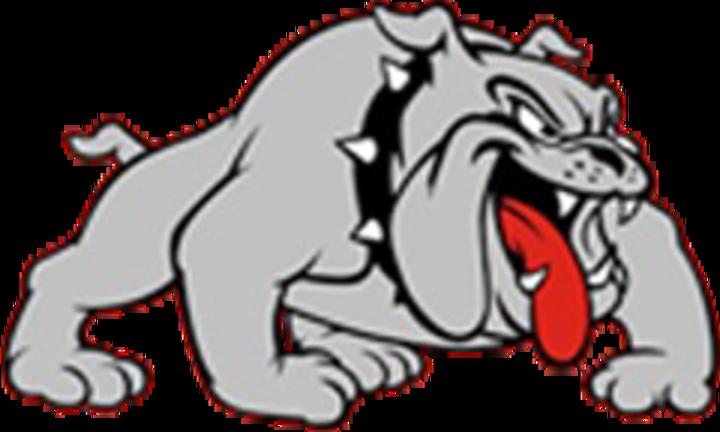 Hampton-Dumont High School mascot