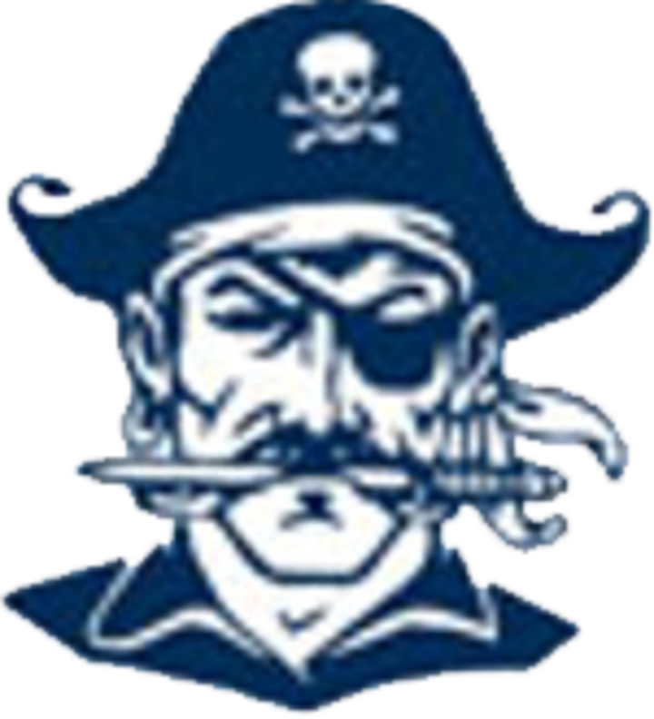 Hudson High School mascot