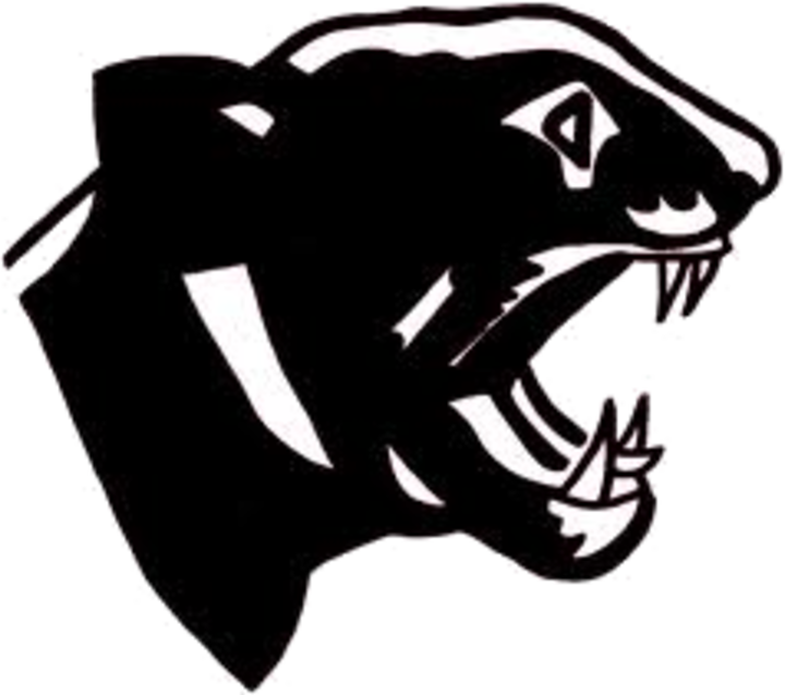 South Iron High School mascot