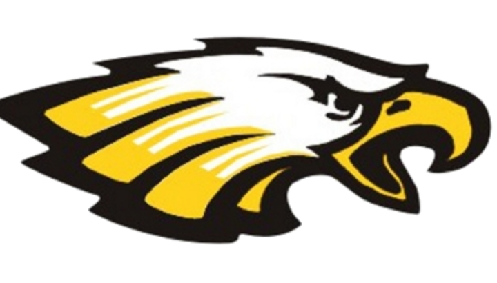 Sullivan High School mascot