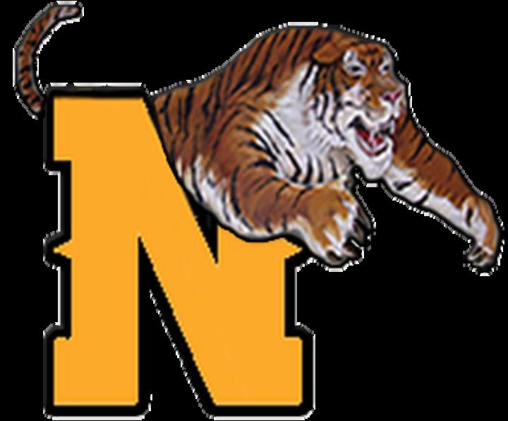 Neelyville High School mascot