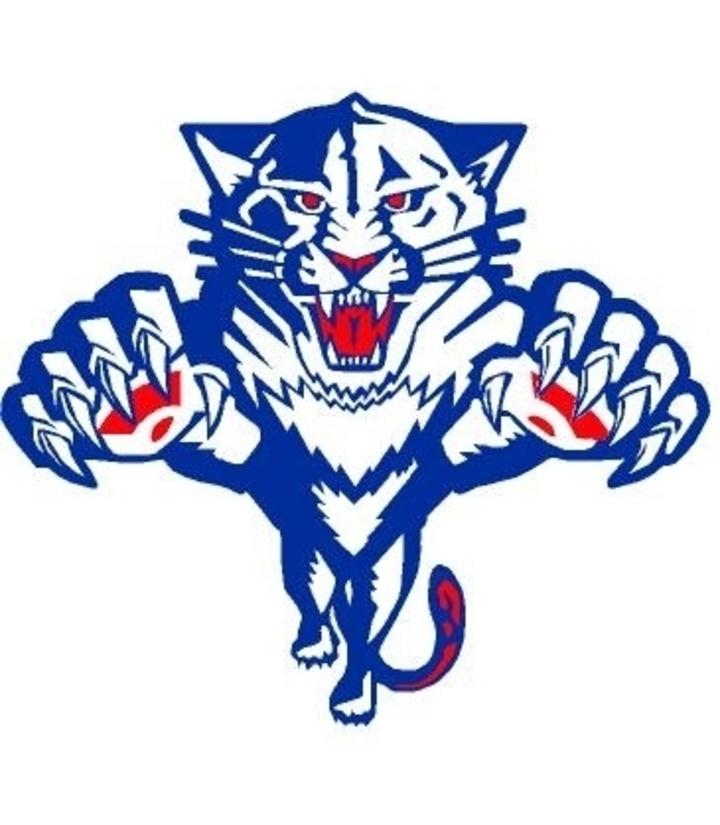Elwood Community High School mascot