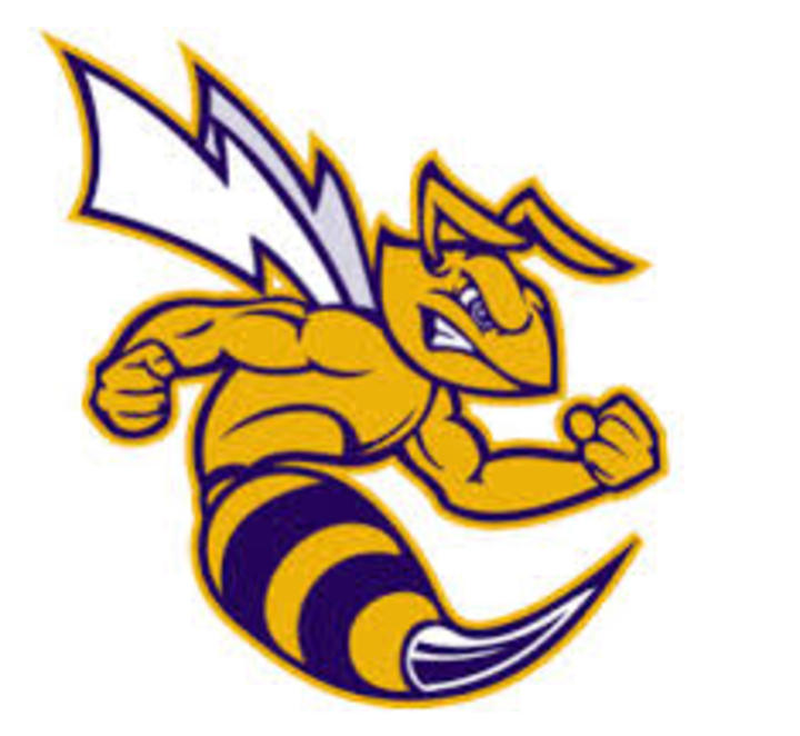 Angola High School mascot