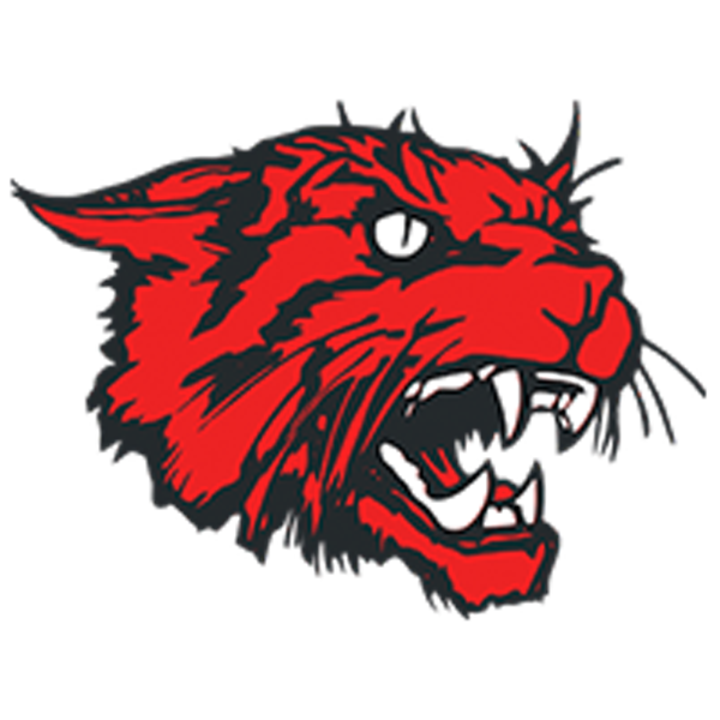 New London High School mascot