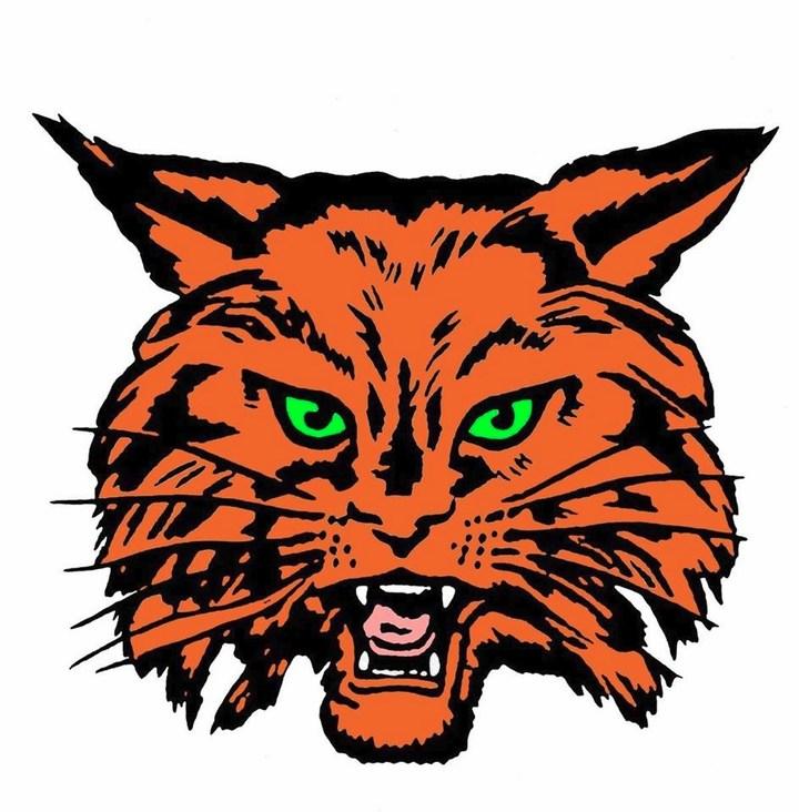 Refugio High School mascot