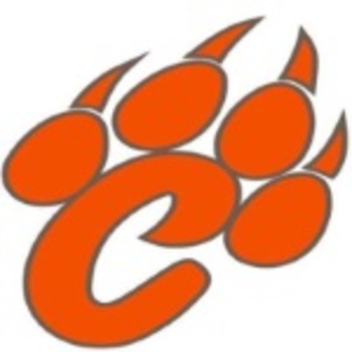 Crawford County High School mascot