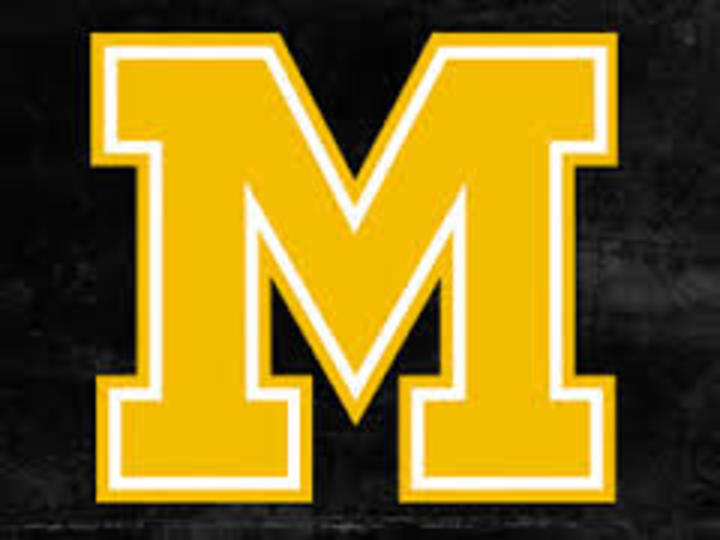 Milan High School mascot