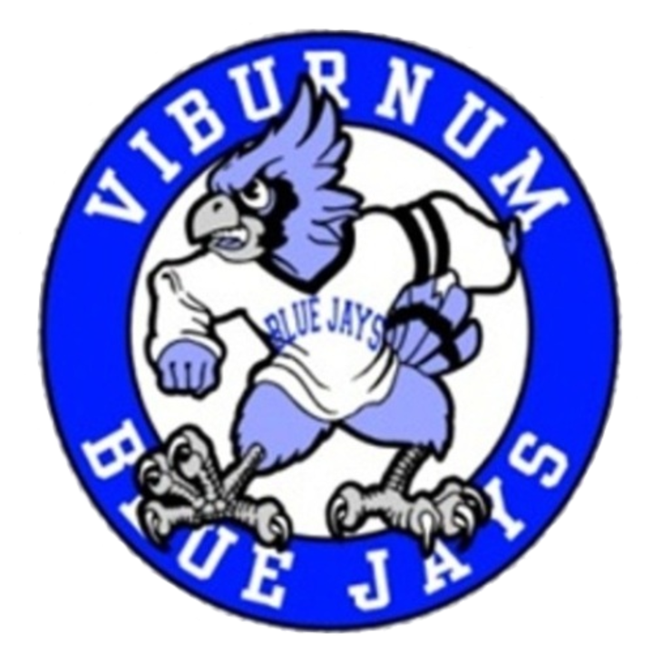 Viburnum High School mascot