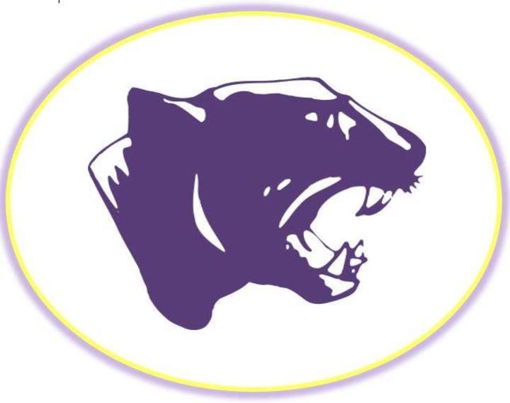 Aransas Pass High School mascot