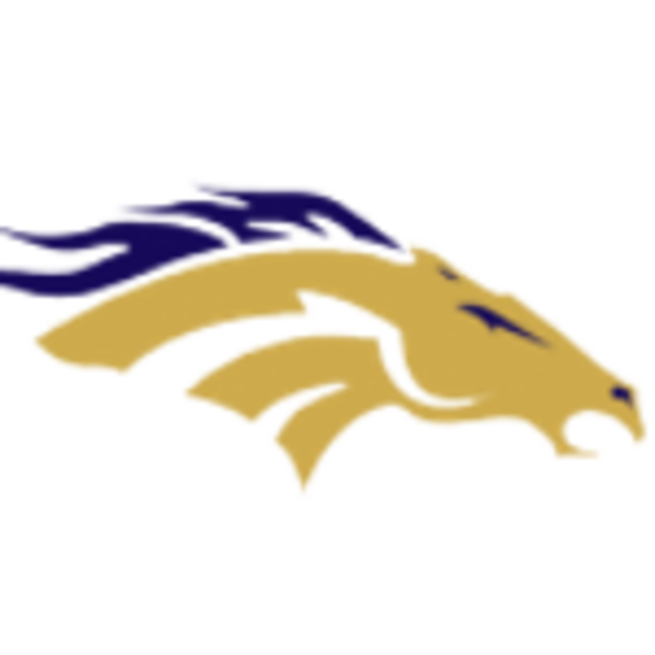 Vista Murrieta High School mascot