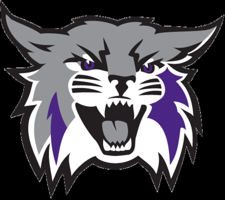 Weber State University mascot