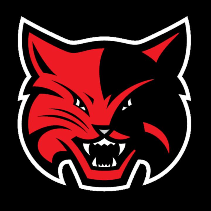 Hull-Daisetta High School mascot