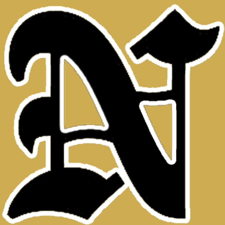 Nederland High School mascot