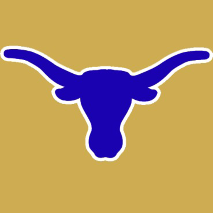 Hamshire-Fannett High School mascot