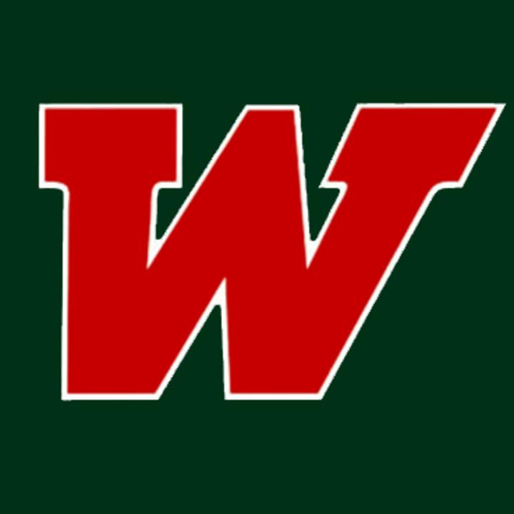 The Woodlands High School mascot