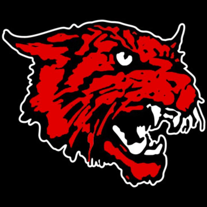 Kirbyville High School mascot