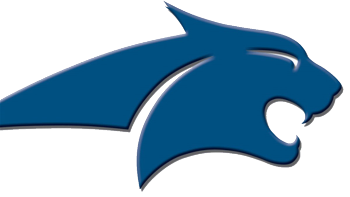 Sky View High School mascot