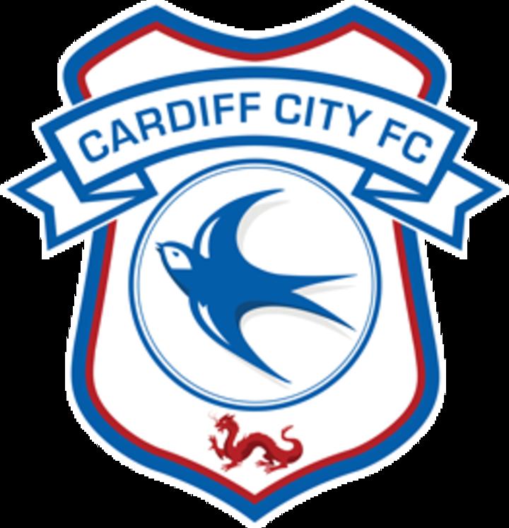 Cardiff City F.C. mascot