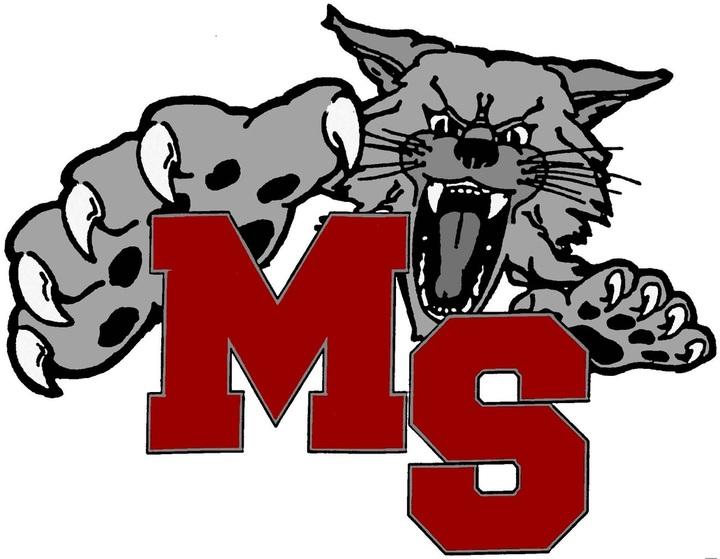 Mount Si High School