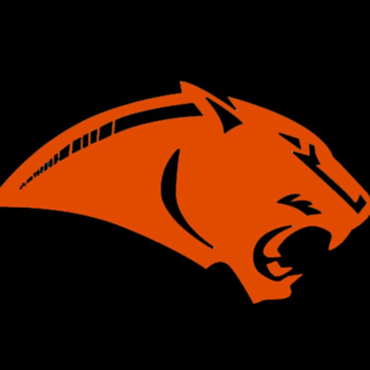 Westwood High School mascot