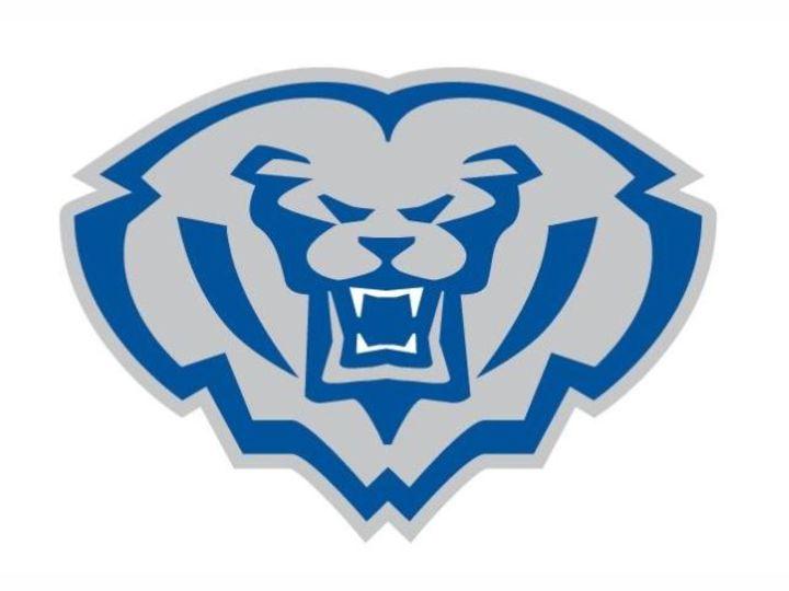 Hamilton Southeastern High School mascot