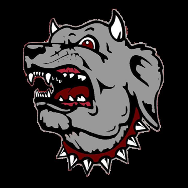 Morrilton High School mascot