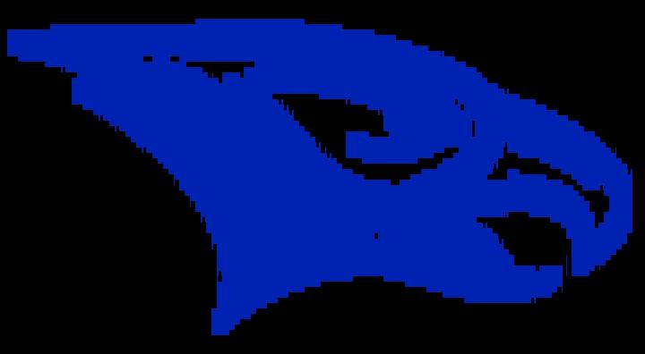 McVeytown mascot