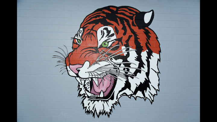 Ardmore High School mascot