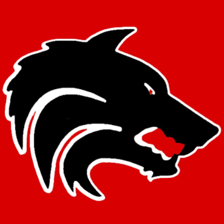 San Augustine High School mascot