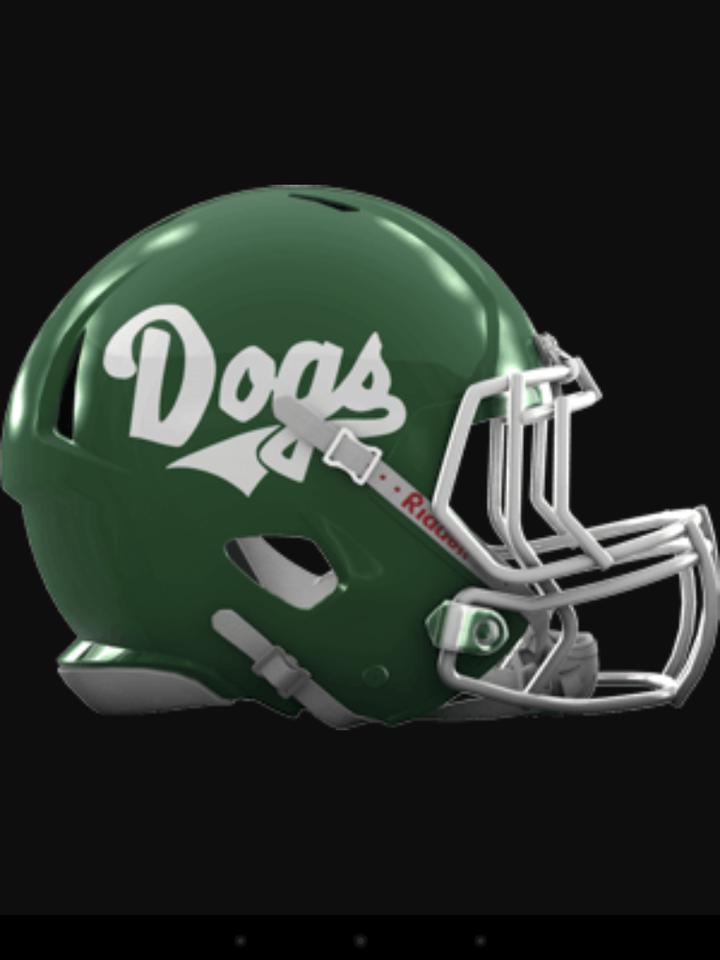 Suwannee High School mascot