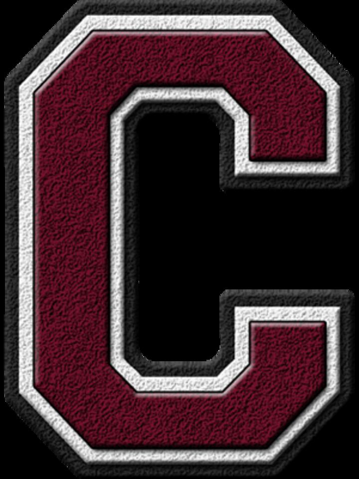 Coleman High School mascot
