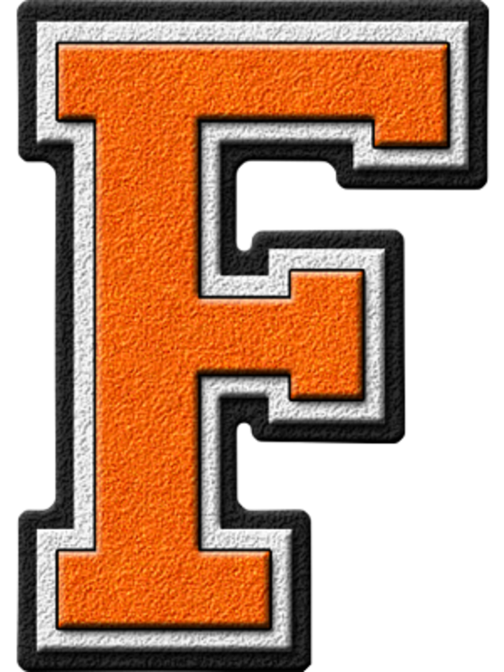 Fairview High School mascot