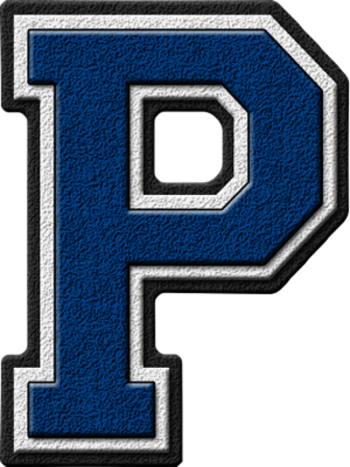 Porter Consolidated High School mascot