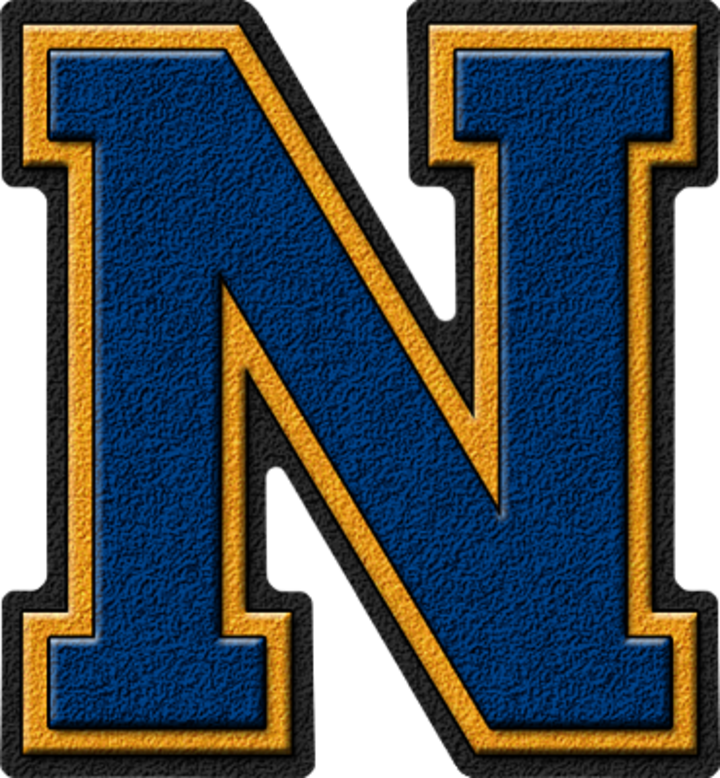 Noble High School mascot