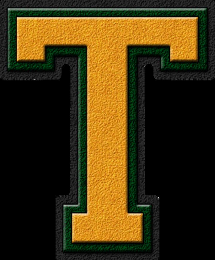 Tyrone High School mascot