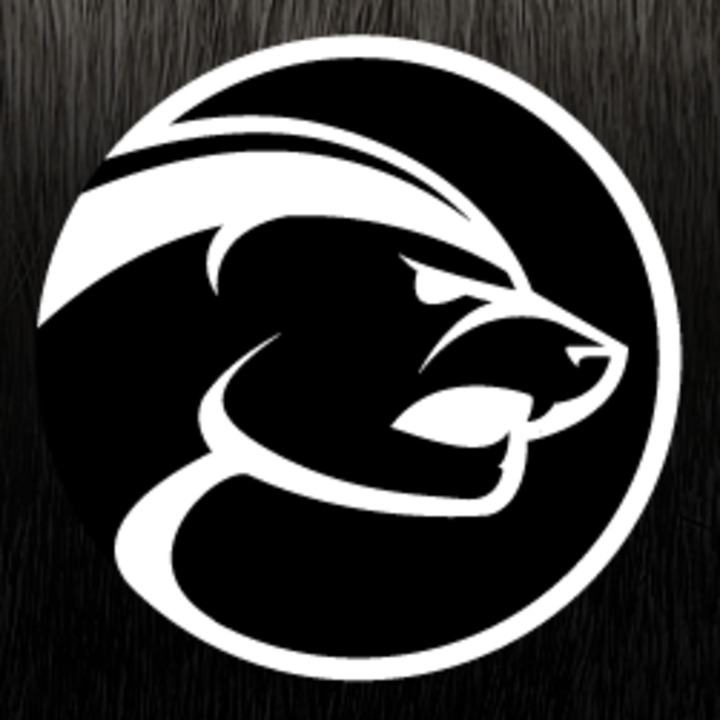 Honey Badgers mascot