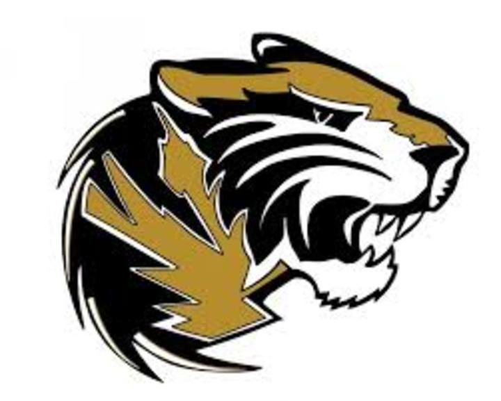 Southern Columbia High School mascot