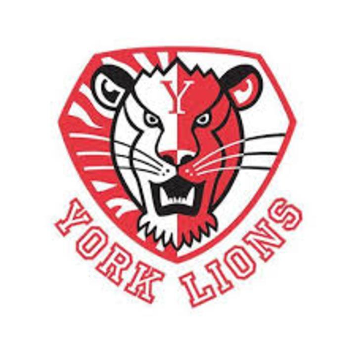York University mascot