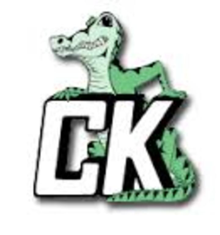 Central Kings Rural High School mascot