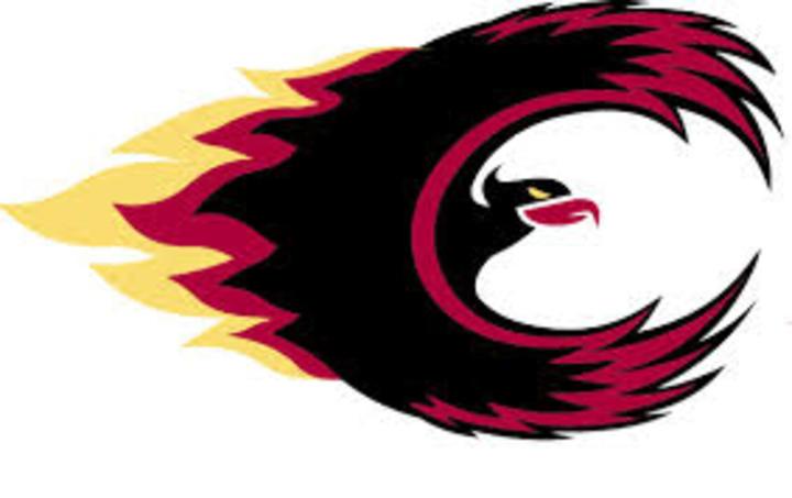 Citadel High School mascot